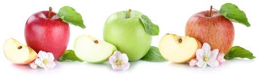 Apple portent des fruits des fruits frais de pommes dans une rangée d'isolement sur le blanc Photographie stock