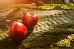 Apple portent des fruits, fruit frais, nourriture saine, Tableau en bois Photo stock
