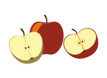 Apple portent des fruits icône d'isolement de vecteur Photographie stock libre de droits