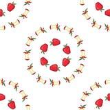 Apple, przyrodni jabłczany bezszwowy wzór Zdjęcia Royalty Free