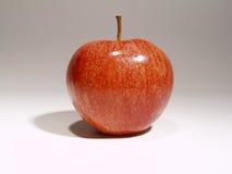 Apple que tenta a maçã vermelha Fotografia de Stock