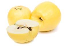 Apple-quince  (Cydonia) Royalty Free Stock Photos