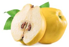 Apple-quince with leaf. File contains clipping path. stock images