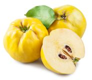 Apple-quince and piece of quince. File contains clipping path. stock photos