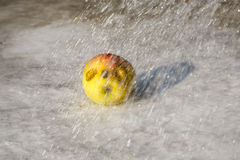 Apple in the rain Royalty Free Stock Image