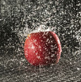Apple in the rain Stock Photography