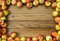 Apple ram royaltyfria foton