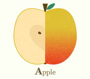 Apple raster illustration Stock Image