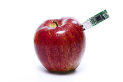 Apple reading information Royalty Free Stock Photography