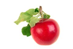 Apple red Royalty Free Stock Photo