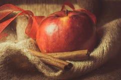Apple. Red aple, cinnamon sticks, food Royalty Free Stock Images
