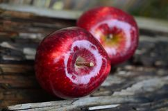Apple, Red Apple, Fruit, Red Royalty Free Stock Photos
