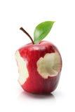 Apple red delicious Imagen de archivo