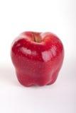 Apple red delicious en blanco Imagen de archivo libre de regalías