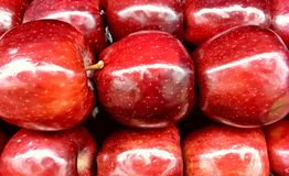 Apple, Red Delicious, Farmers Market in Oklahoma City. Nice banner or background graphic royalty free stock images