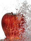 Apple red delicious pieno di bolle Fotografia Stock Libera da Diritti