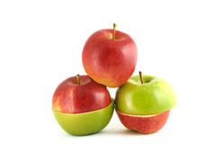 Apple red and green. Clean, fresh and appetizing Stock Images
