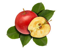 Apple red half and leaves Royalty Free Stock Images