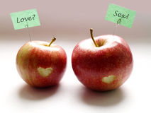 Apple relationship. Beginning. Two lovers apple on white background Royalty Free Stock Images