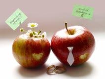 Apple relationship. Wedding. Stock Photos