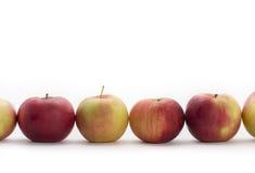 Apple-rij Royalty-vrije Stock Fotografie