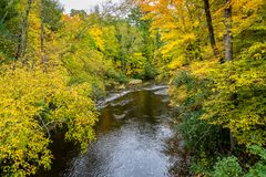 The Apple River in Autumn in Wisconsin. The Apple River in Western Wisconsin with brilliant vibrant autumn foliage royalty free stock images