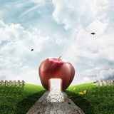 The Apple Road Stock Photography