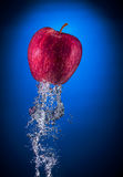 Apple rocket. Red apple  and water splash isolated on blue Stock Photography