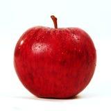 Apple rojo Imágenes de archivo libres de regalías