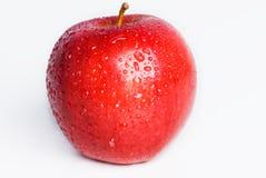 Apple rojo aislado Foto de archivo libre de regalías