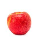 Apple rojo escoge aislado en el fondo blanco Fotos de archivo libres de regalías