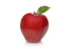 Apple rojo maduro con la hoja Fotos de archivo libres de regalías