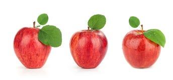 Apple rojo maduro con la hoja Imagen de archivo libre de regalías