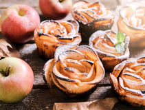 Apple rose stock photography