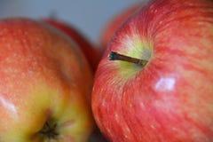 Apple rosso fresco Immagini Stock