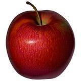 Apple rosso realistico su un fondo in bianco Immagine Stock Libera da Diritti