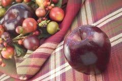 Apple rosso sulla priorità bassa di caduta Fotografia Stock