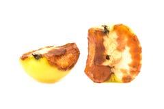 Apple rot. Stock Photo