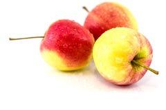 Apple rouge à l'arrière-plan blanc Images stock