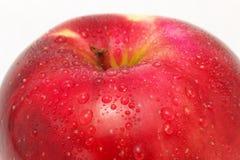 Apple rouge Photo stock
