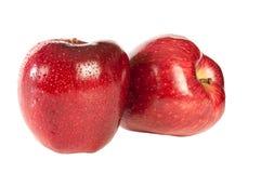 Apple rouge Image libre de droits