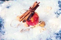 Apple rouge s'embranchent cannelle de bâtons Anise Tied vers le haut de corde photographie stock