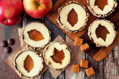 Apple rounds with caramel filled centers, overhead view Stock Photo