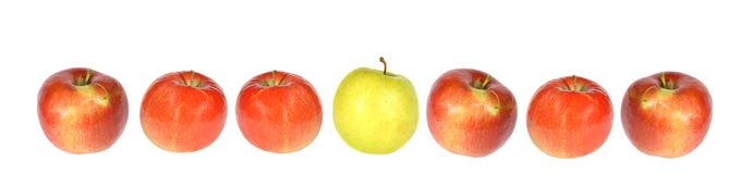 Apple row. Composition of one yellow and six red apples isolated on white Stock Image