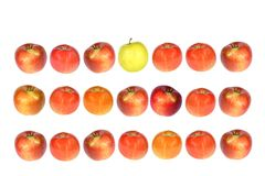 Apple row. Composition of one yellow and twenty red apples isolated on white Royalty Free Stock Photos