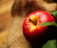 Apple on a sack Royalty Free Stock Photography
