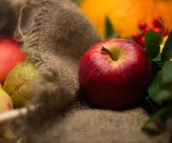 Apple on a sack Royalty Free Stock Image