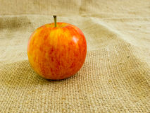 Apple sackcloth Στοκ Εικόνα