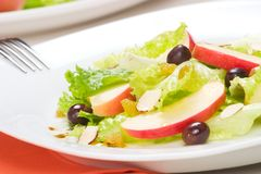 Apple salad Stock Image