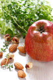 Apple, salad and nuts. stock photos